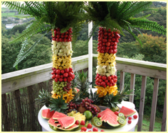 Twin Fruit Palm Trees