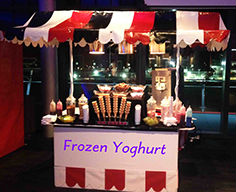 Frozen Yoghurt Stand with full range of toppings